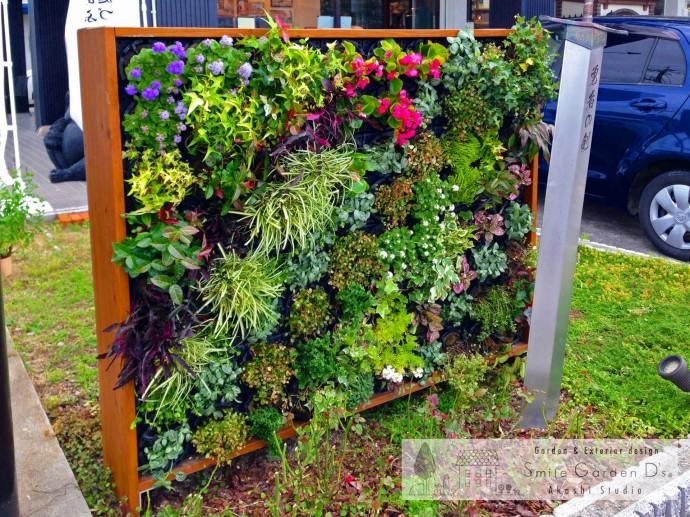 スマイルガーデンディーズ 明石市 点検 壁面緑化