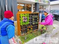 スマイルガーデンディーズ 神戸市西区 壁面緑化