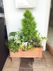スマイルガーデンディーズ 加古川 明石 花壇