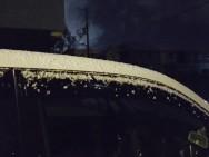 初雪 スマイルガーデン 明石 加古川