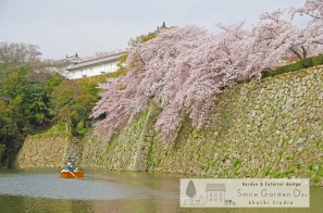 桜 スマイルガーデン明石 外構工事 庭相談 庭リフォーム