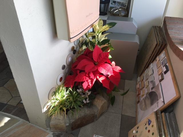 山咲さん店内お花