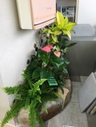 スマイルガーデン店内お花