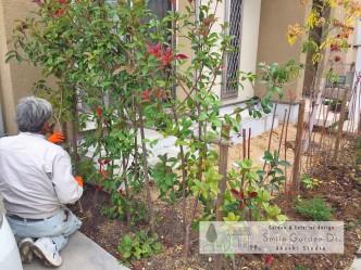明石市外構 神戸市西区外構 外構工事 庭デザイン 門 塀 ガーデン