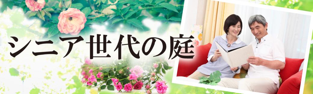 加古川市、高砂市、播磨町、稲美町、明石市・大久保・大久保町にお住まいのシニア世代のみなさまへ、バラの花が咲き誇る上質なお庭、外回